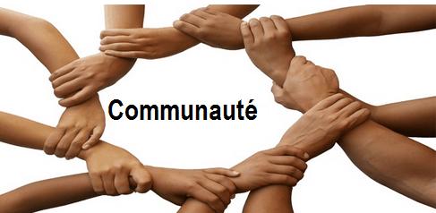 avoir une communauté sur internet - SEO